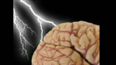 Photo of أبحاث الدماغ البشري وكيفية توظيفها في حفظ آيات القران الكريم والاستراتيجيات التعليمية المناسبة لها