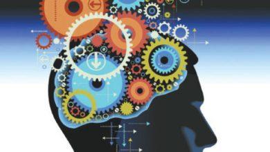 Photo of إستراتيجيات وتطبيقات تربوية  للتعلم المستند الى الدماغ